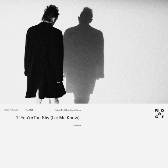 the1975_tooshy-copy-1587563824